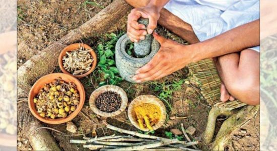 AYURVEDA MEDICINE TO SCHOOL CURRICULUM