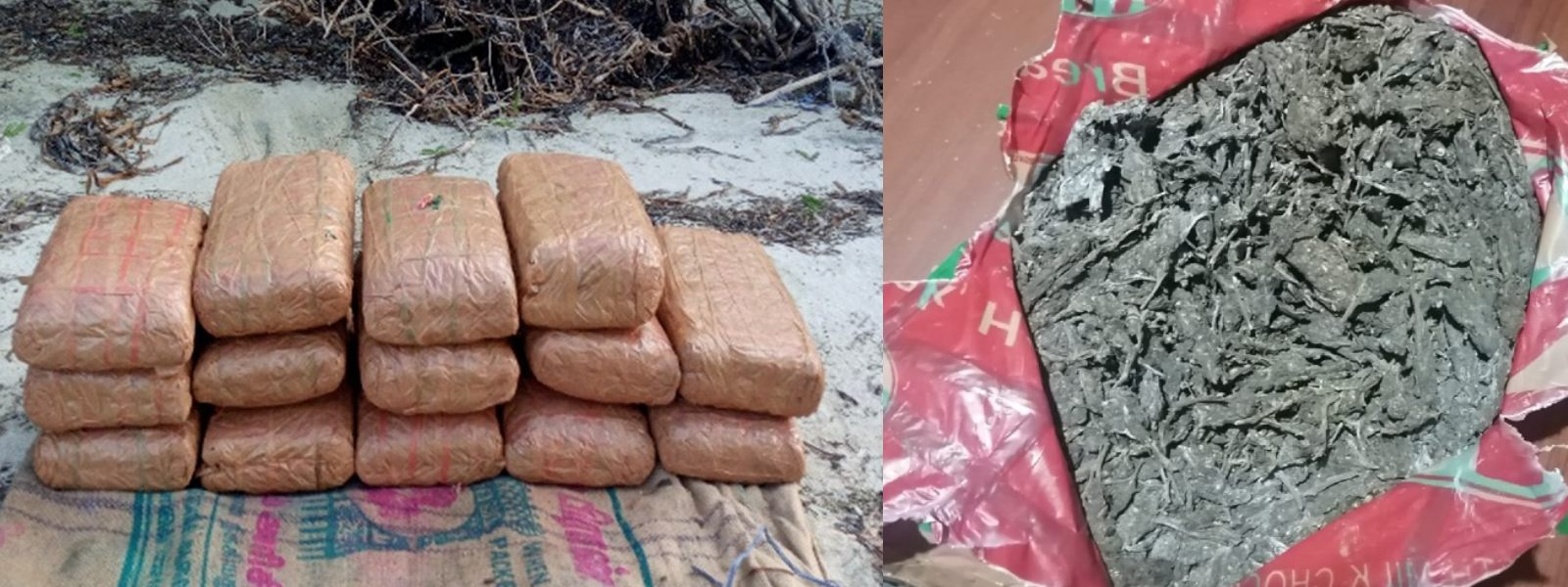 Navy recovers 31kg of Kerala cannabis at Manthai beach