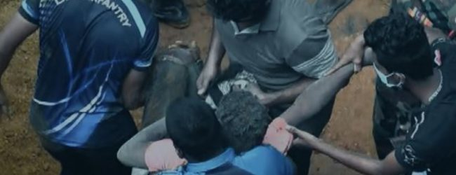 Construction workers injured after a mound of earth collapses in Thalangama