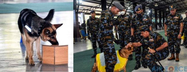 Passing Out Parade for newly inducted SLAF Air Dogs