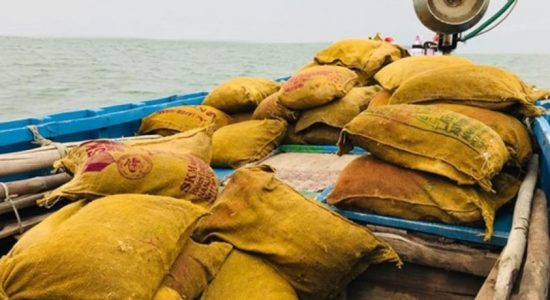 Over 8700kg of smuggled dried turmeric seized in northwestern seas