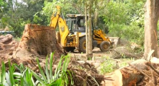 RAJAPIHILLA PARK DESTRUCTION; CEA ORDERED TO SUBMIT REPORT