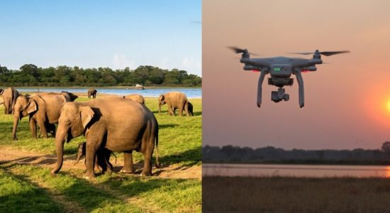 DRONE TECHNOLOGY TO CHASE ELEPHANTS