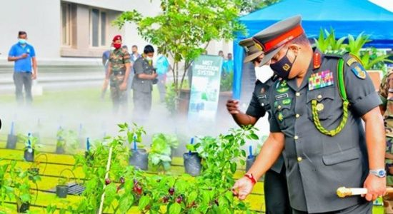 ARMY'S CORPS OF AGRICULTURE & LIVESTOCK ESTABLISHED