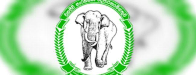 Concerns on destruction at Kurunegala's Rajapihilla park