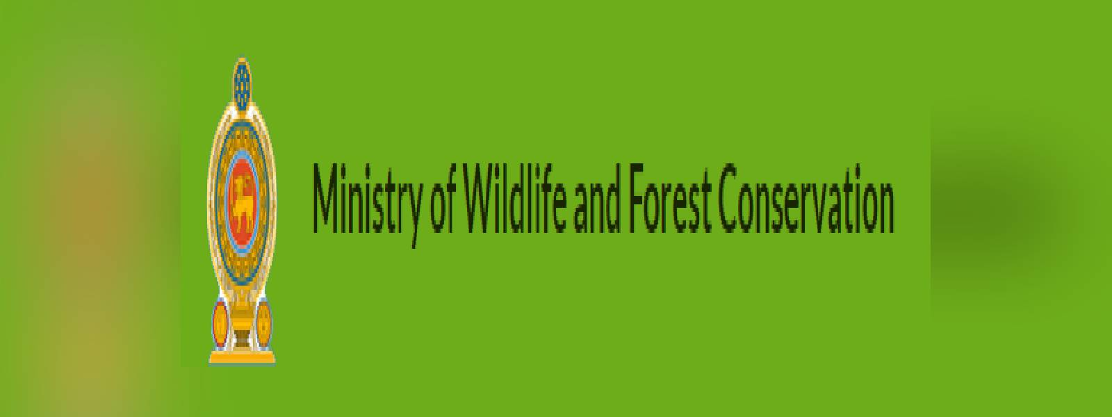Island-wide survey on Protected Flora and Fauna