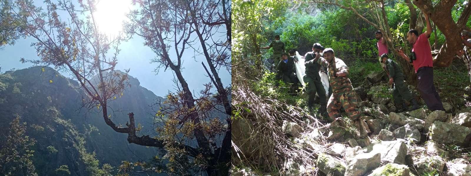 Remains of missing hiker found in Narangala Ridge