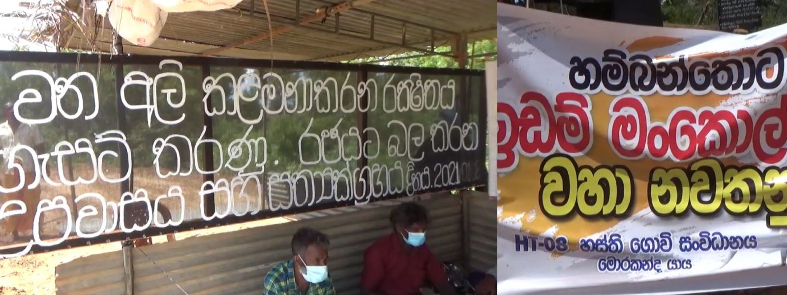 Walsapugala farmers protest for 15th consecutive day