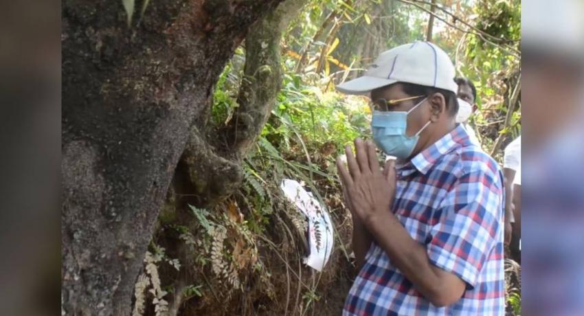 President visits Sri Lanka's endemic tree