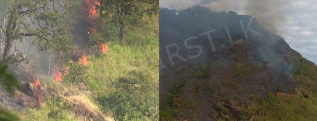 Fire at Ravana Ella forest reserve still continuing