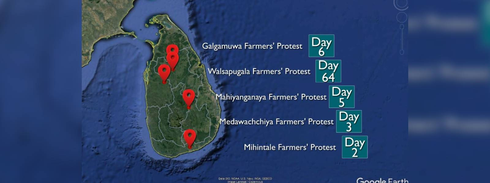 Protests to protect forests and wildlife continue