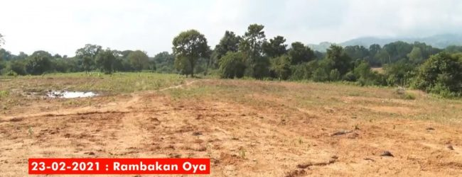 Rambakan Oya deforestation case on May 3