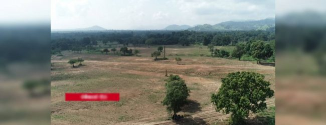 Concerns mount over clearing lands in Rambakan Oya