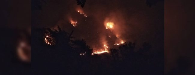 Fire erupts at Ravana Ella forest reserve