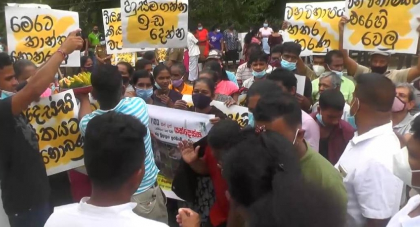 Kithulgala residents protest against deforestation