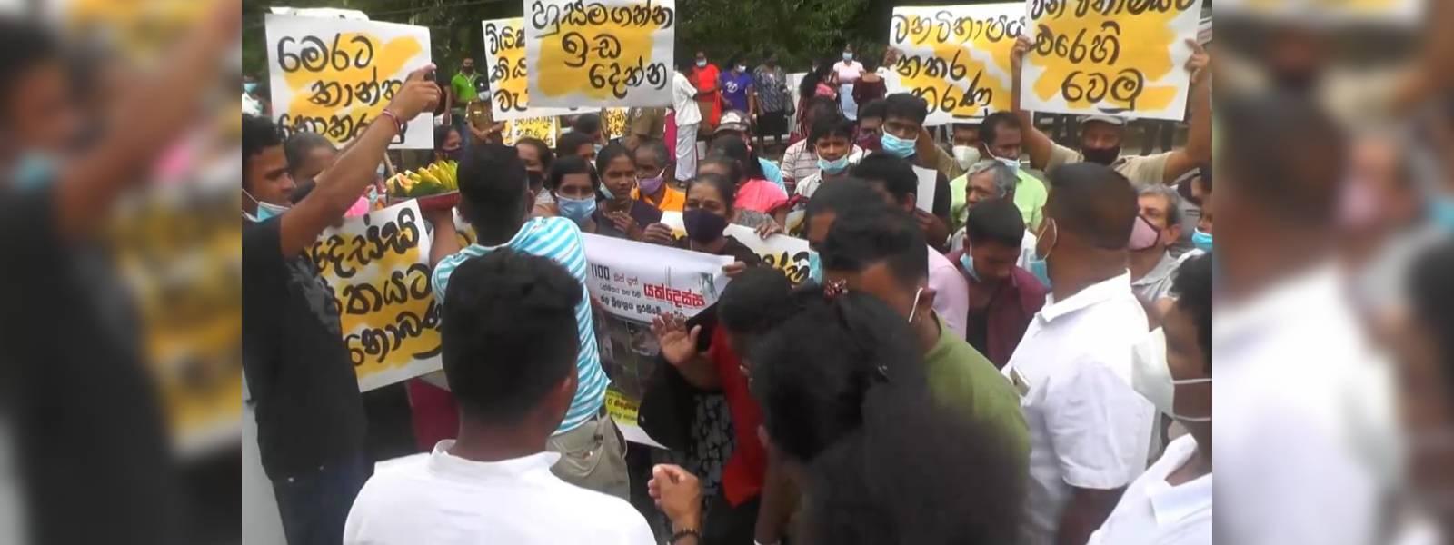 Kithulgala residents protest against deforestation