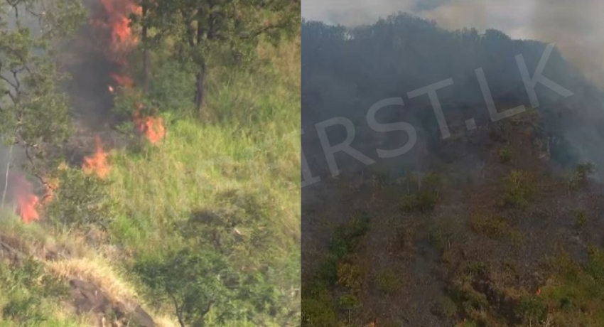 Fire at Ravana Ella forest reserve still continuing