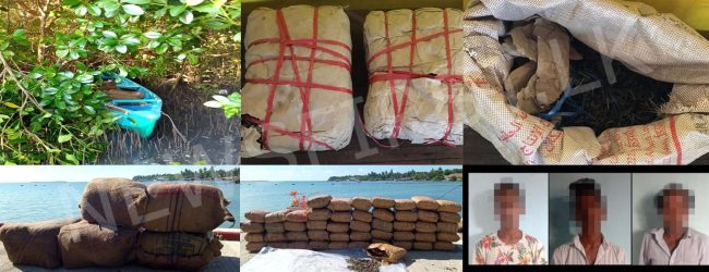 SLN seize over 100kg of Kerala Cannabis in Kalpitiya