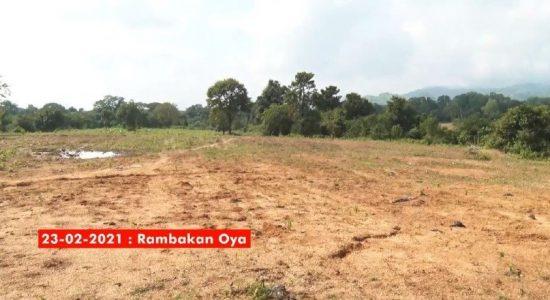 Rambakan Oya deforestation case on May 3