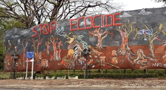 Activists stand ground against attempts to remove mural on environmental issues