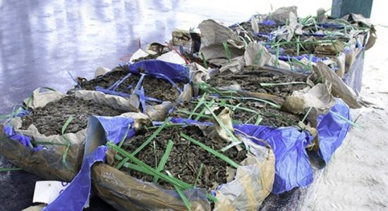Navy recovers Kerala cannabis worth Rs. 72 million in northern seas