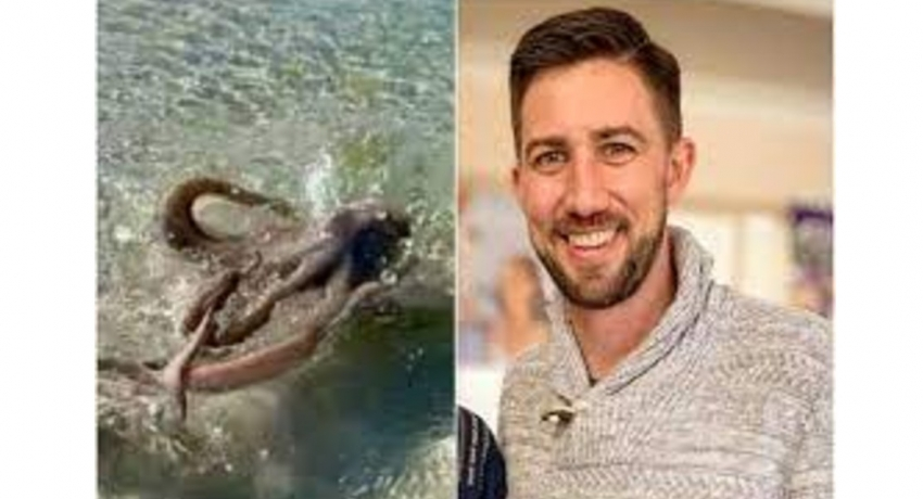 Geologist beaten up by 'angriest octopus' on beach