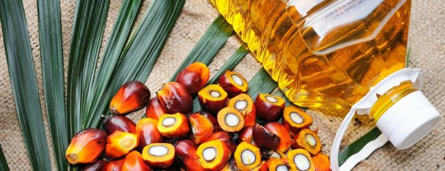 Ban on Palm Oil imports could change – Keheliya
