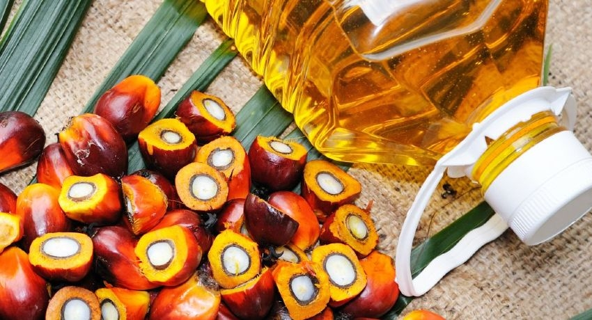 Importing Palm Oil suspended with immediate effect