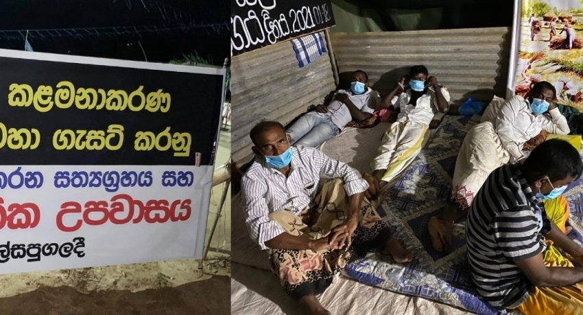 Sri Lankan farmers protest for Wild Elephant Rights for 100 consecutive days