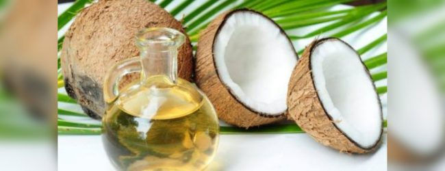 Only 30% of SL's Coconut oil demand produced locally: CDA