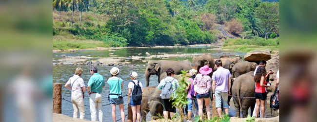Private sector associations oppose Tourism Bill