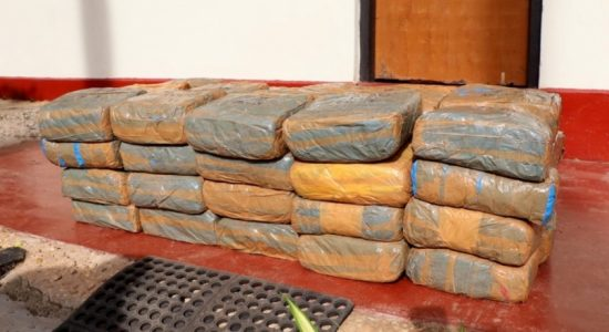 Navy seizes abandoned stock of Kerala cannabis worth over Rs. 39 million
