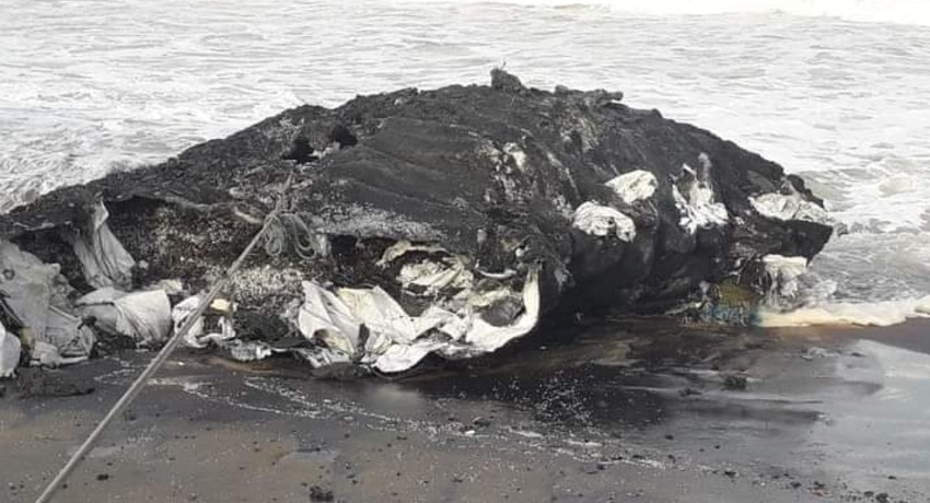 (PICTURES) Debris from burning ship litters Sri Lanka's western coast