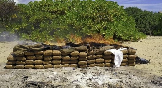 Navy seizes stock of Kerala cannabis worth over Rs. 70 million