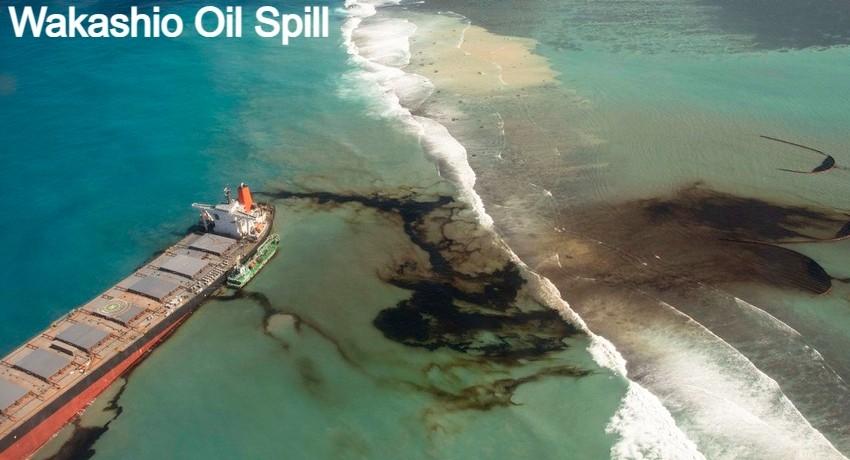 5145d47d d0fc4909 wakashio oil spill