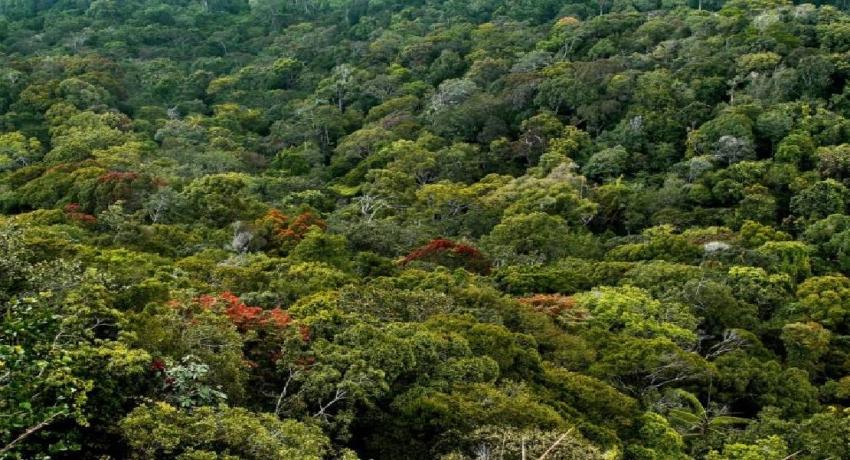 Cabinet nod for new National Environmental Bill