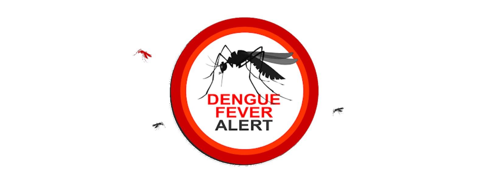 Sharp rise in dengue patients: NDCU