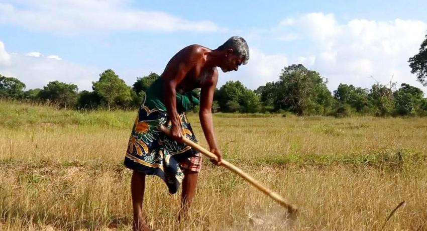 Fertilizer shortage continues to plague farmers