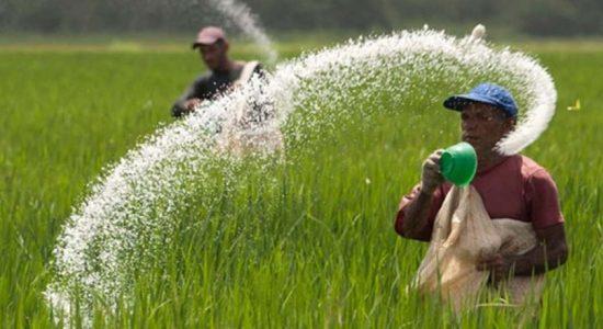 Sri Lanka to suspend Chemical & Organic fertilizer imports