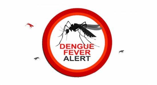 THREE strains of Dengue virus spreading across Sri Lanka