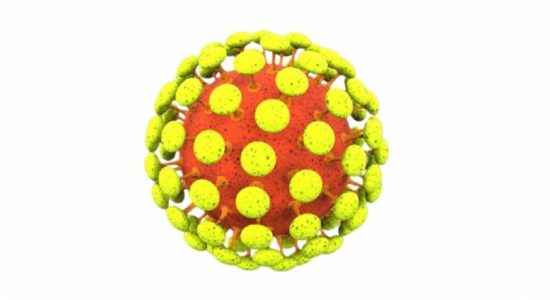 396 COVID cases from Gampaha in 24 hours; 2,370 infections across the island