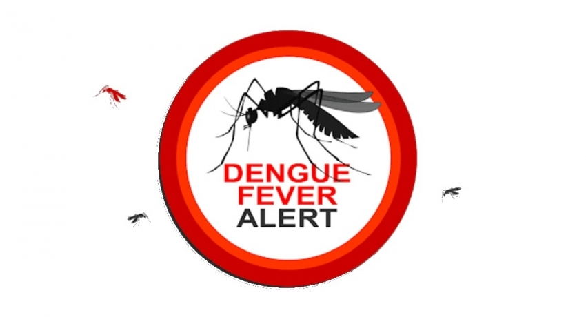 Over 10,000 dengue patients reported so far in 2021.