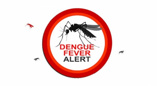 Colombo & 09 districts identified as Dengue High-Risk zones