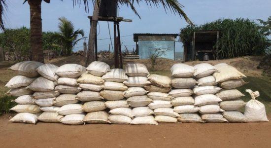 Navy seizes 2360kg of dried turmeric at Vankalai beach