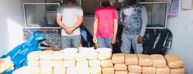 Kerala Cannabis & Crytal Meth worth Rs. 50 Million seized in Velvettithurai, Jaffna