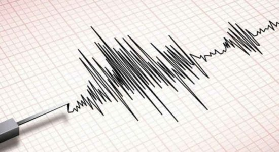 Magnitude 5.0 tremor in Indian Ocean, South of Sri Lanka; No impact to the island – GSMB
