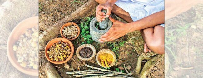 'Ayurvedic medicines box' to be delivered to every house