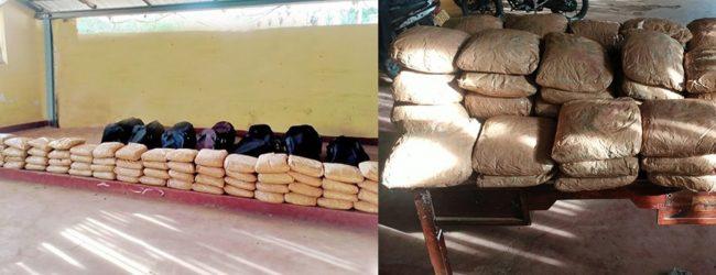 Kerala cannabis worth over Rs. 39 million seized in Mannar