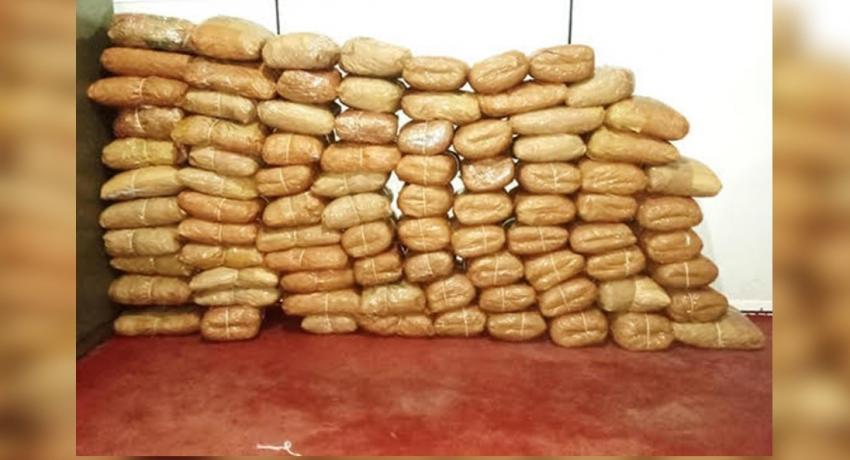 Police & Navy bust Rs. 55 mn worth Kerala cannabis