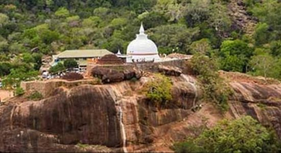One more arrested for defacing Yala Historic Site & stealing artifacts